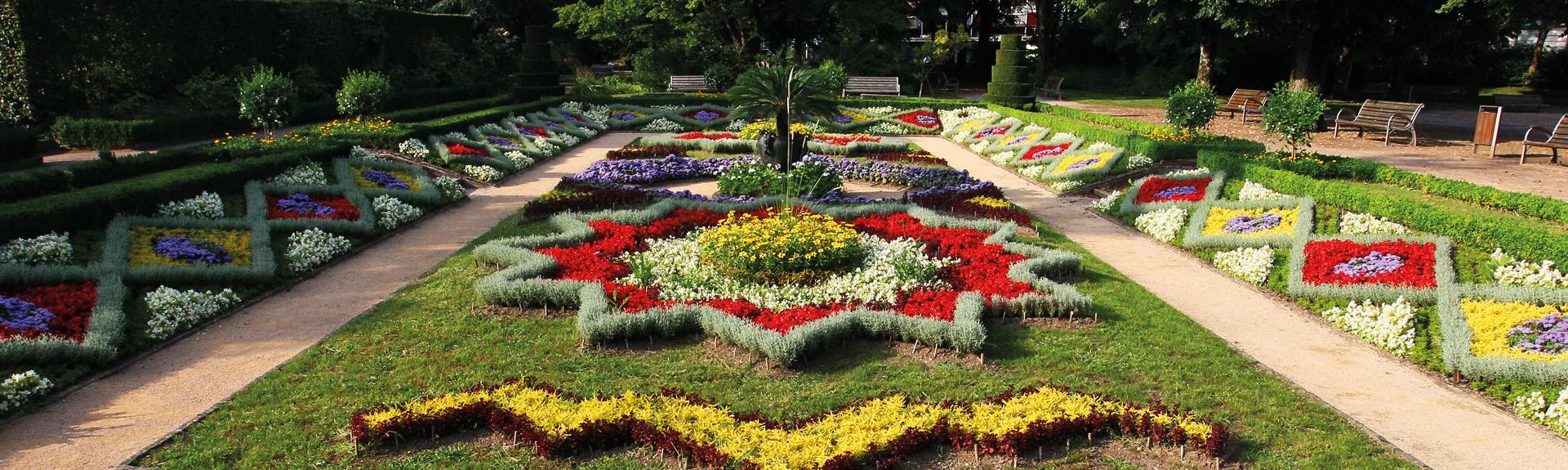 Parterre de fleurs colorées
