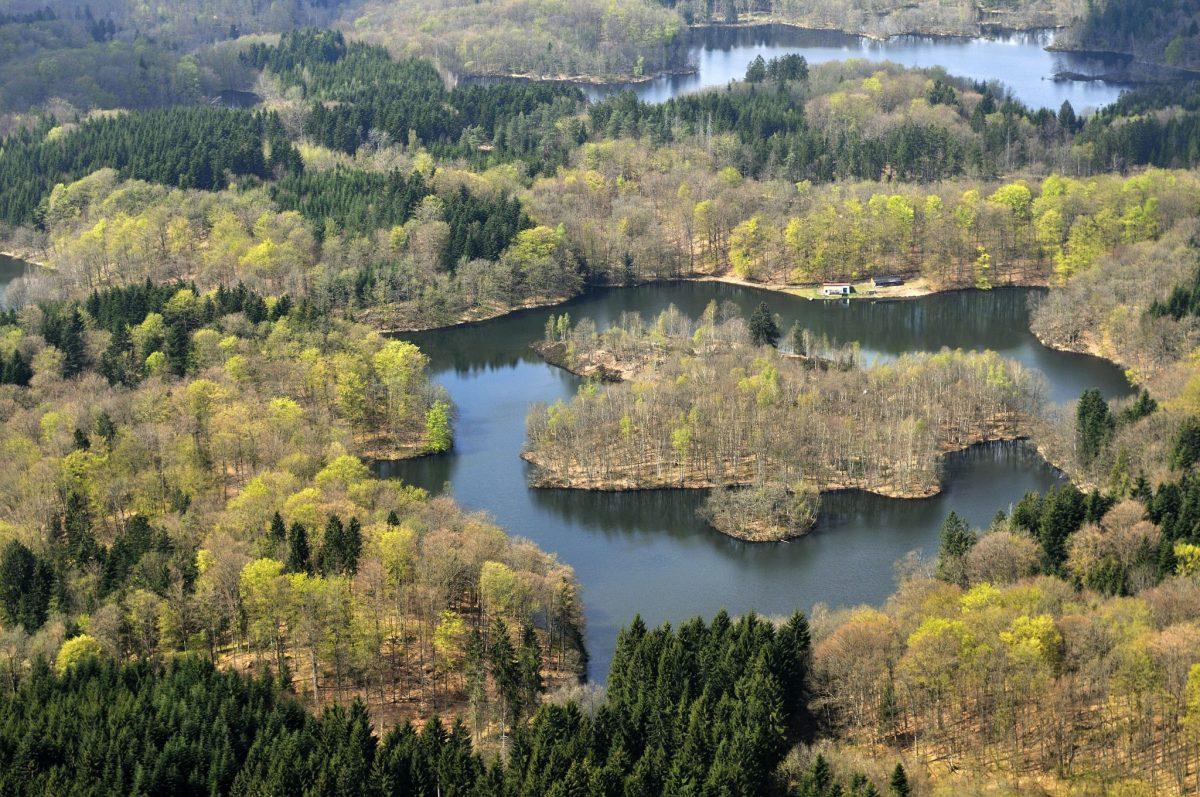 plateau mille étangs