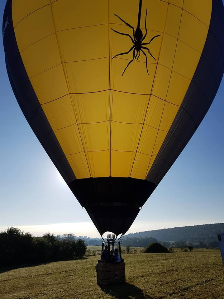 SPIDER BALLOON_1
