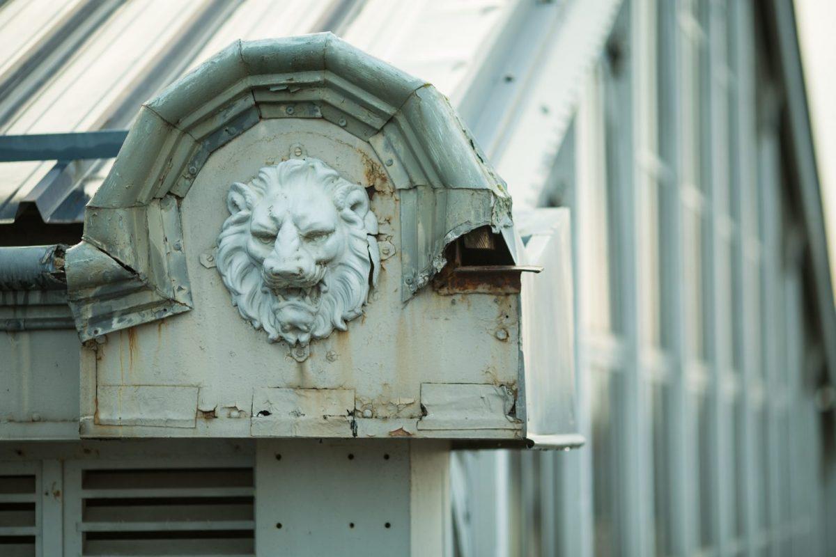 Lion marché Fréry