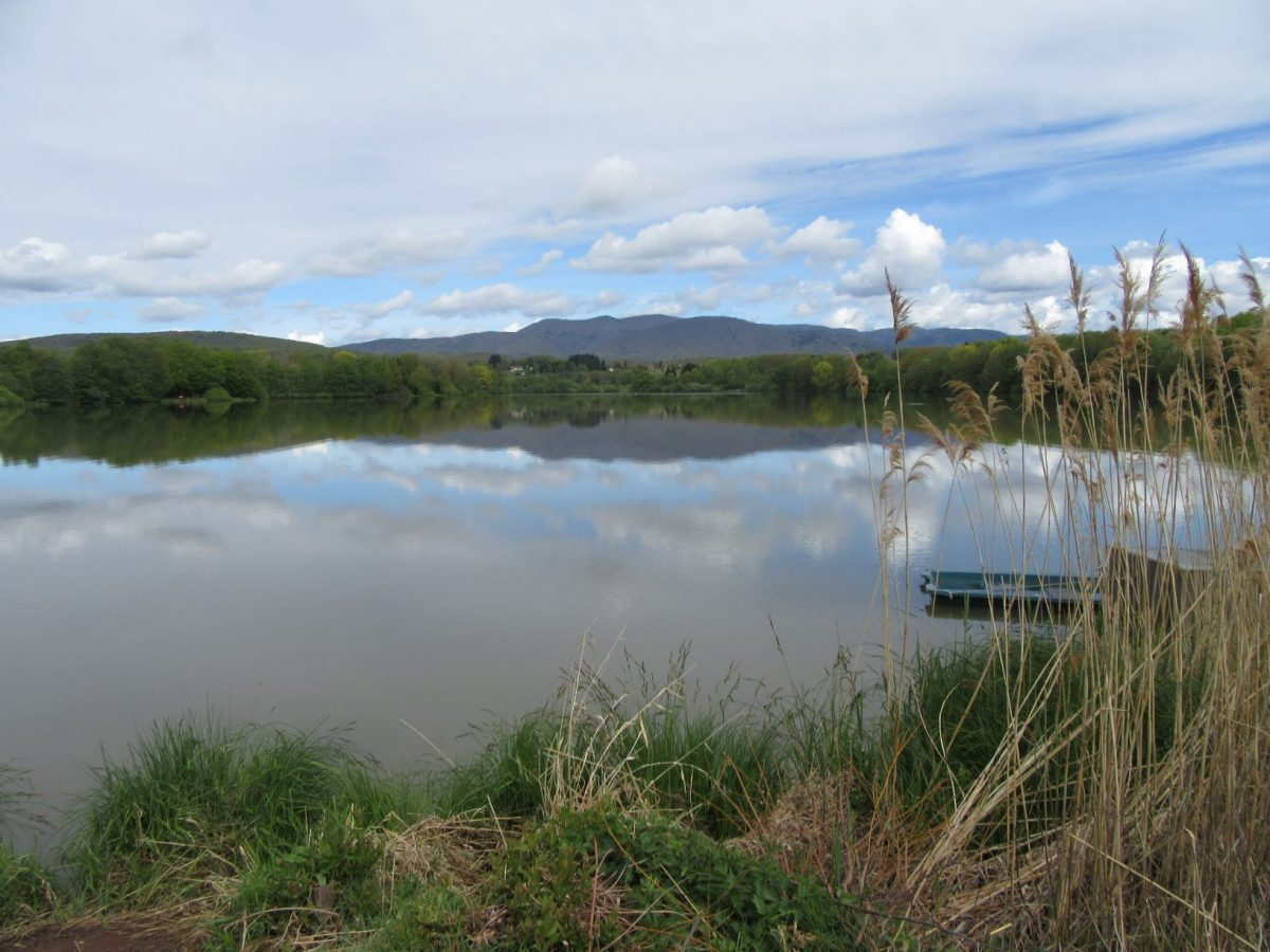 lac-malsaucy