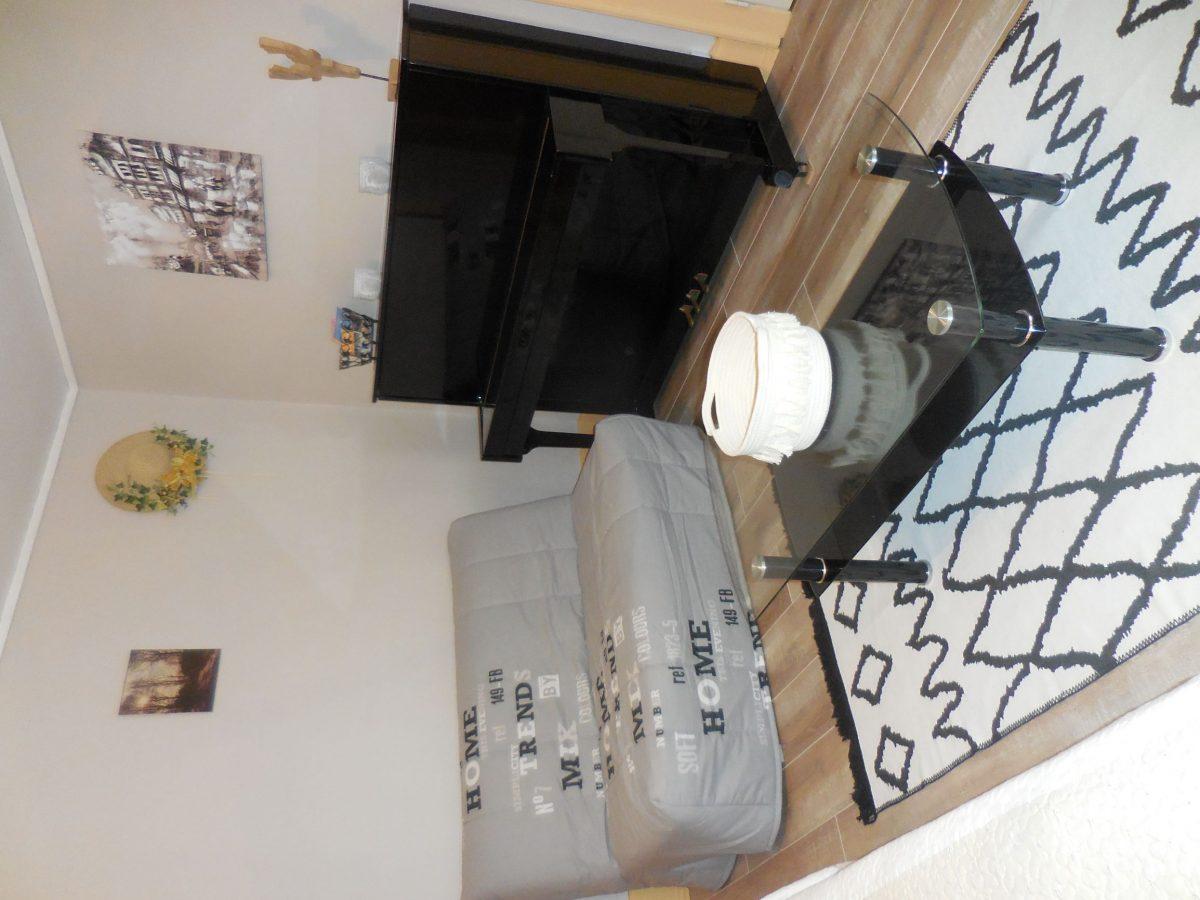 salon meublé Giro